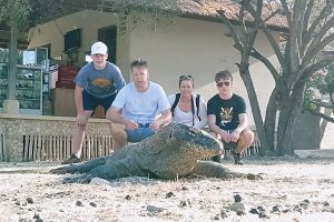 komodo-dragon-island-tours