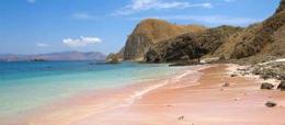 Pink-Beach-Komodo-Tour